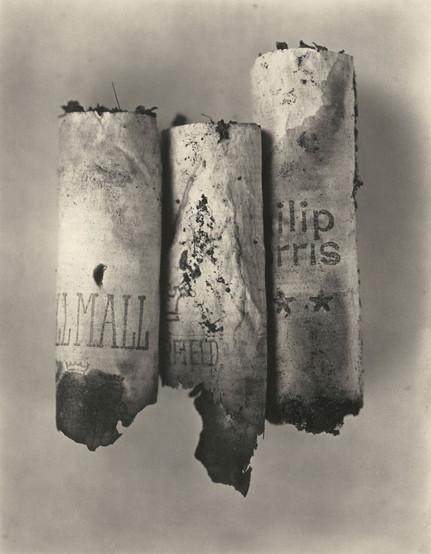 Irving Penn - Natureza Morta