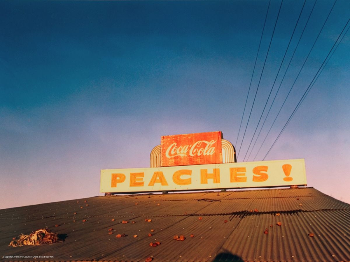 William_Eggleston_14.jpg
