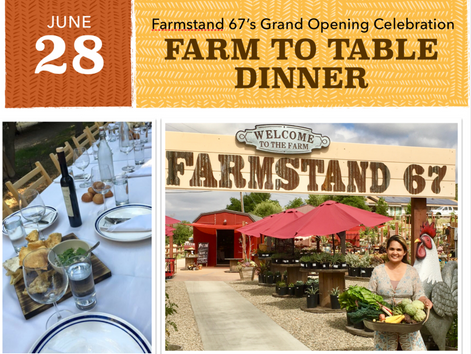 FARMSTAND 67'S GRAND OPENING CELEBRATION FARM TO TABLE DINNER : Artichokes and Wine Pairing