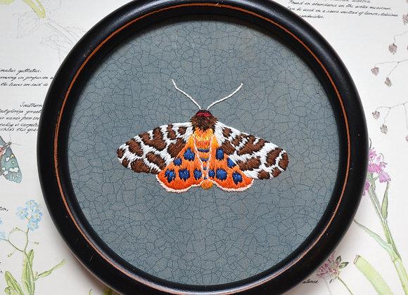 Great Tiger Moth