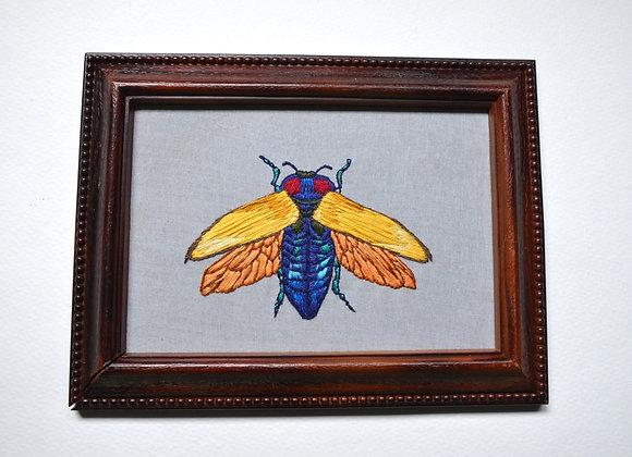 Yellow Jewel Beetle