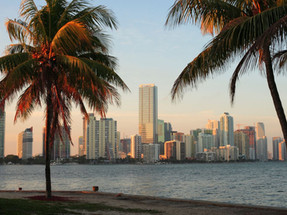 FLORIDA TICKS ALL THE BOXES FOR YOUR ALL ROUND SUCCESS, PLUS SUN AND SEA!