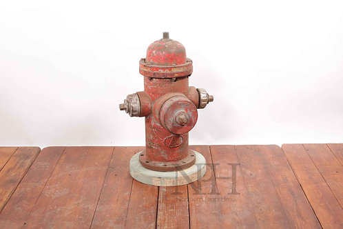 American fire hydrant cast