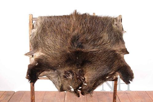Boar skin