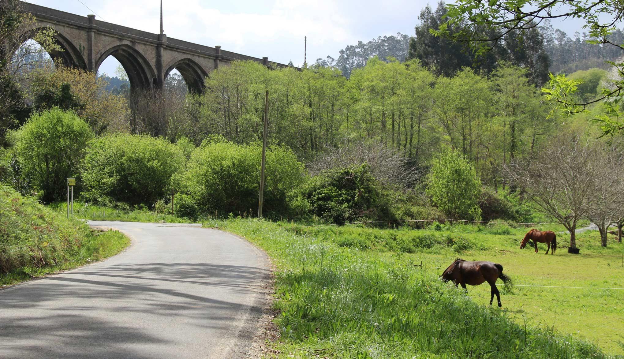 Carretera del río