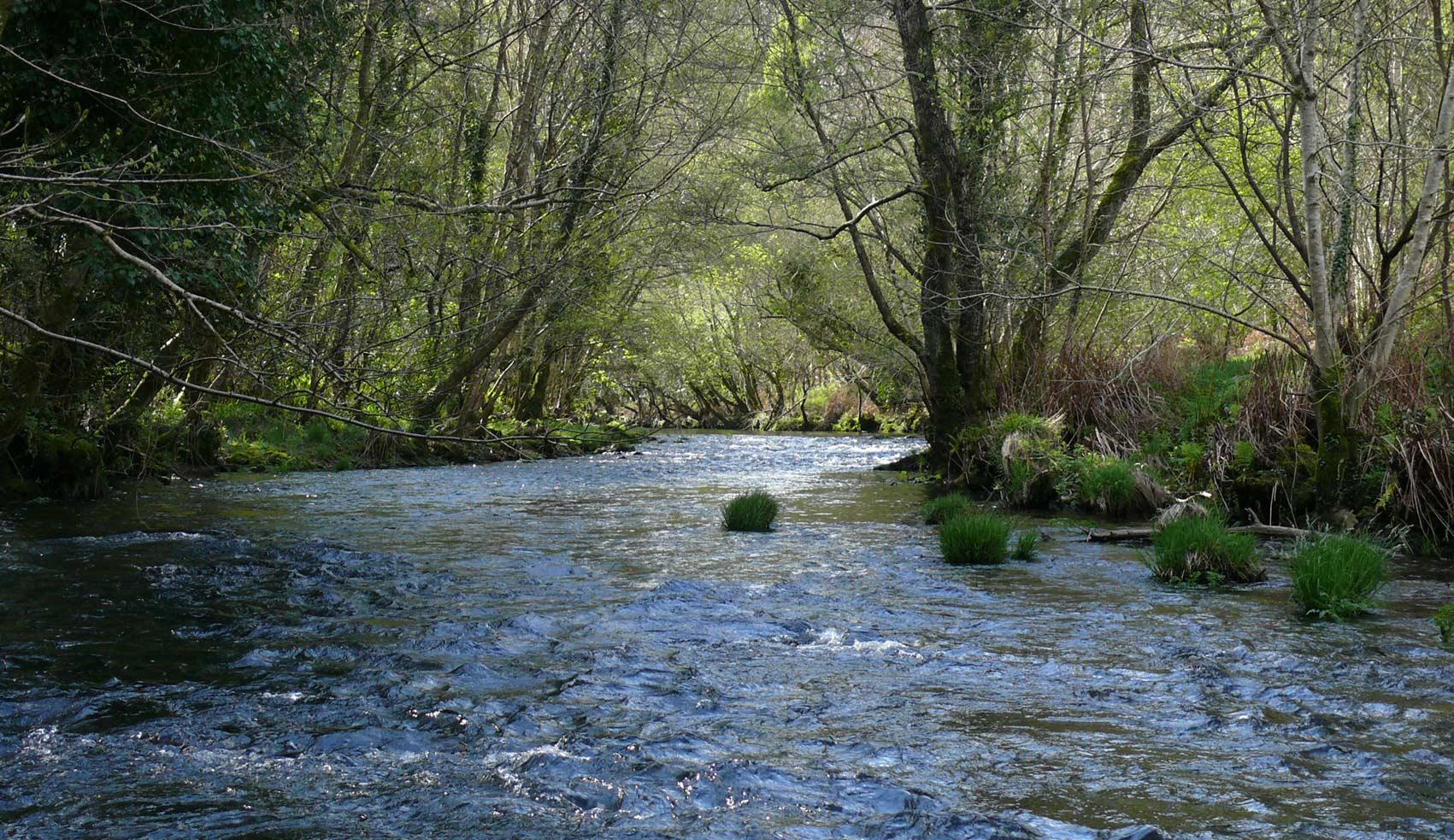 Río Mera