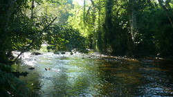 River Mera
