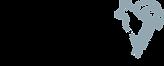 SFC logo_Dec2020.png