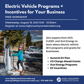 Electric Vehicle Workshop for Businesses