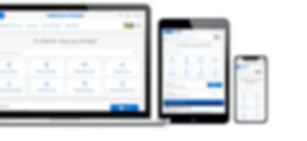amex web mobile v2.png