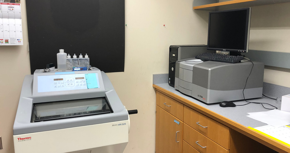 Cryotome and plate reader