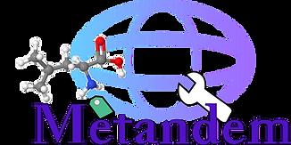 Metandem_Color.png
