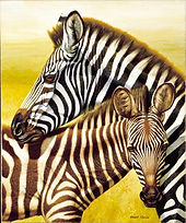 09 TANOIRA cebras  90 x 70 cm MARCO NOGA