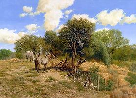 LOTE 8 ED LIM correa caballos y torcazas