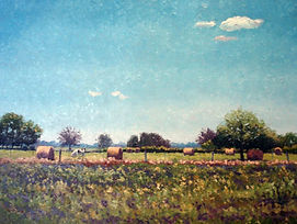 lote 40 QUIETUD RURAL,  60 X 80   C8.jpg