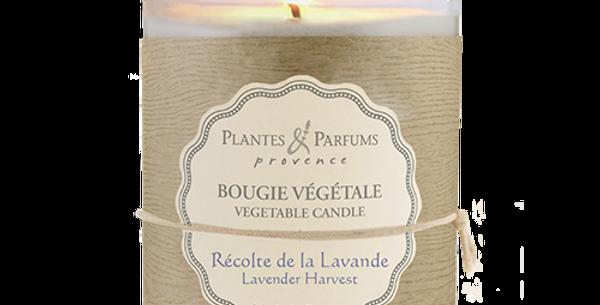 香薰工藝蠟燭 (Lavender Harvest)