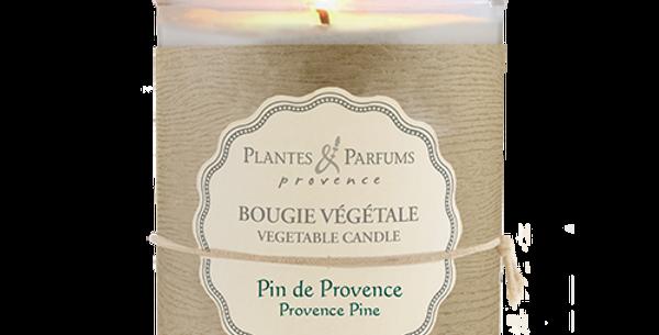 香薰工藝蠟燭 (Provence Pine)