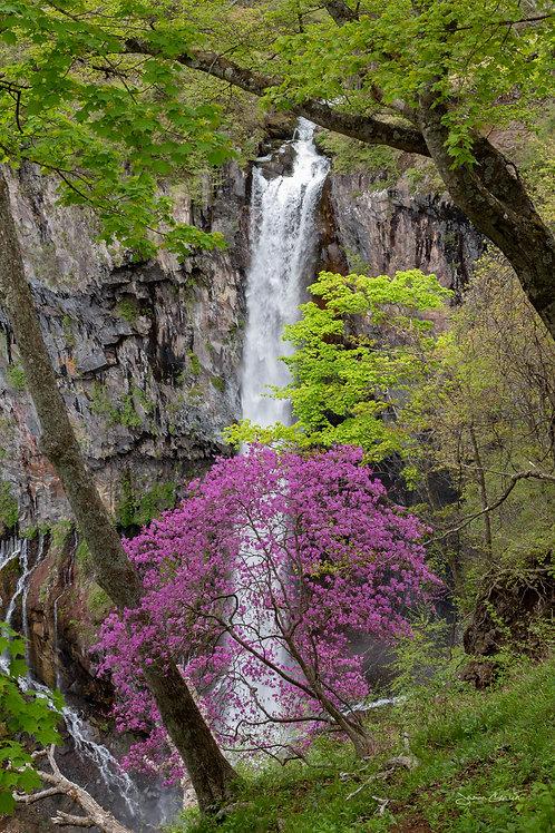 Kegon Falls - Nikko