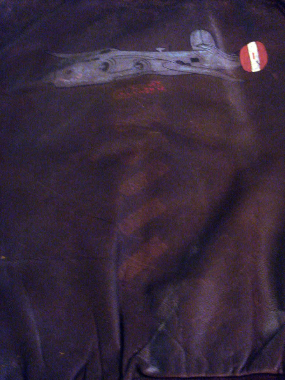 flight-jacket-painting_2701841121_o.jpg