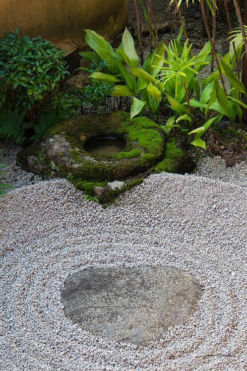 Zen Garden 1 - Daitoku-ji - Kyoto