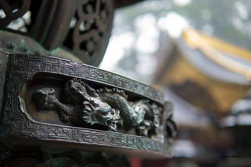 Nikkō Tōshō-gū Shrine - Dragon