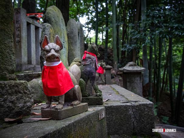Kitsune-2.jpg