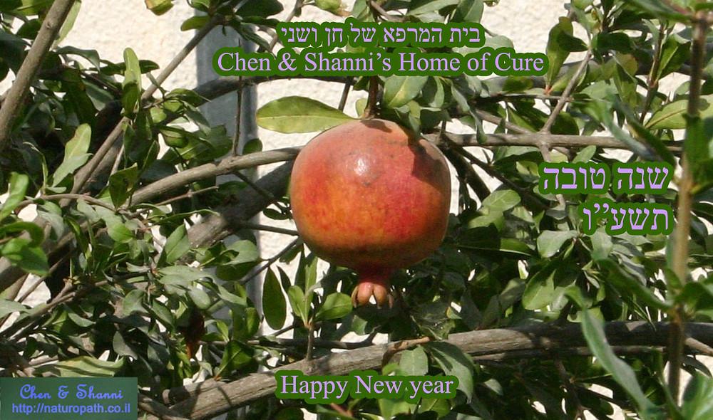 שנה טובה - שנהיה מלאים כרימון