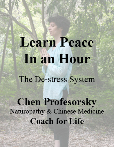 The cover of my Digital EBook - learn peace in an hour