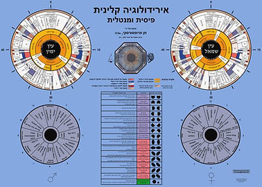 מפה אירידולוגית פיסית ותודעתית בעברית של חן פרופסורסקי. פוסטר לקיר או גירסה שלחנית