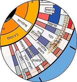 מקטע מוגדל מהמפה האירידולוגית של חן פרופסורסקי
