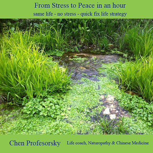 From Stress to Peace in an hour - digital book