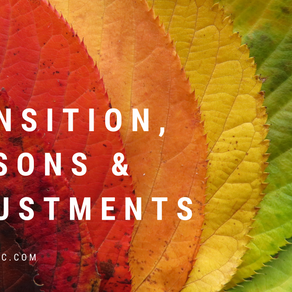Transitions, Seasons and Adjustments