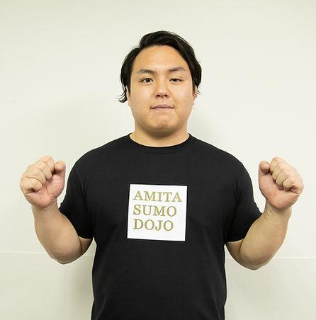 AMITA SUMO DOJO Online