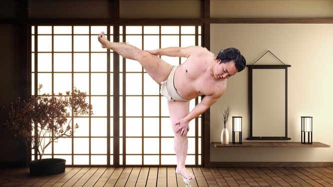 Online Sumo Workout