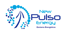 new pulso energy_page-0001.png