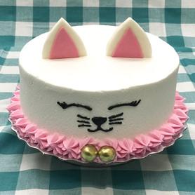 Kitten Cake