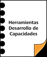 DESARROLLO CAPACIDADES.png