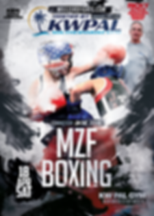 MZF BOXING FLYER TESTER.png