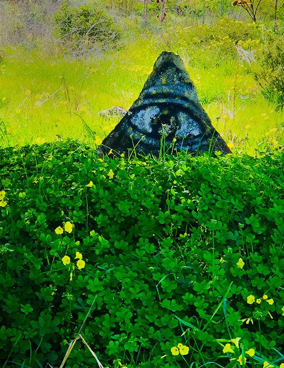 eye over clover-72.jpg
