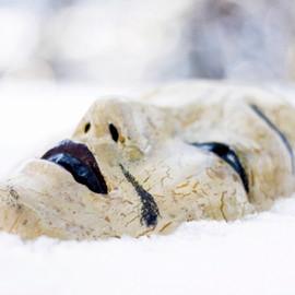 Maske im Schnee