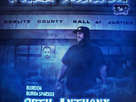 "Seth Anthony - ""Free Taylor"""