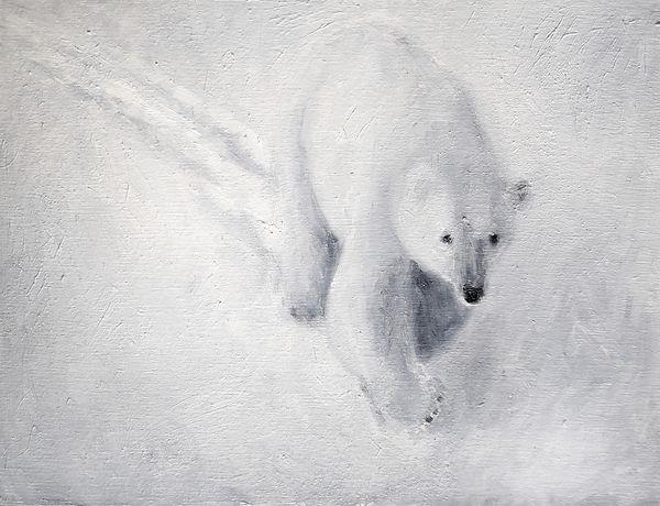 Polar Bear6x8.jpg