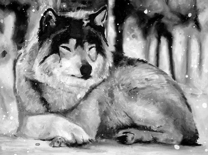 3wolf12x16.jpg