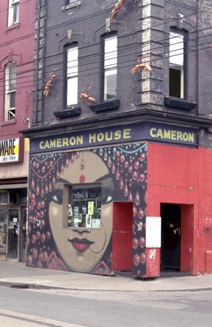 cameronhouse-1996.jpg