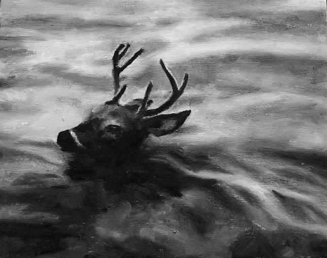 Deer in River8x10.jpg