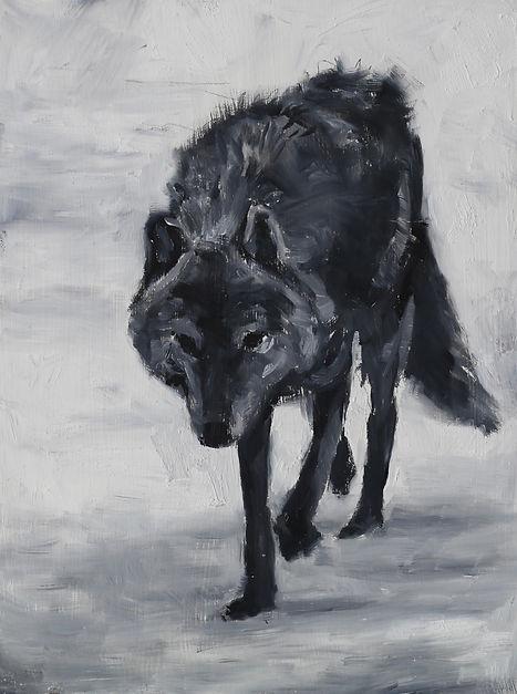4wolf8x6.jpeg
