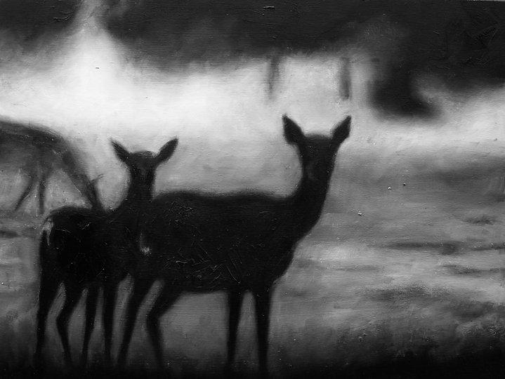 Deer at Dawn12x16.jpg