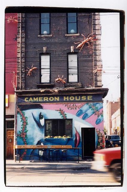 cameron+colleena1.jpg