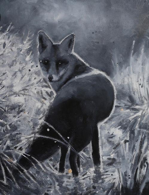 Fox 16x12.jpeg