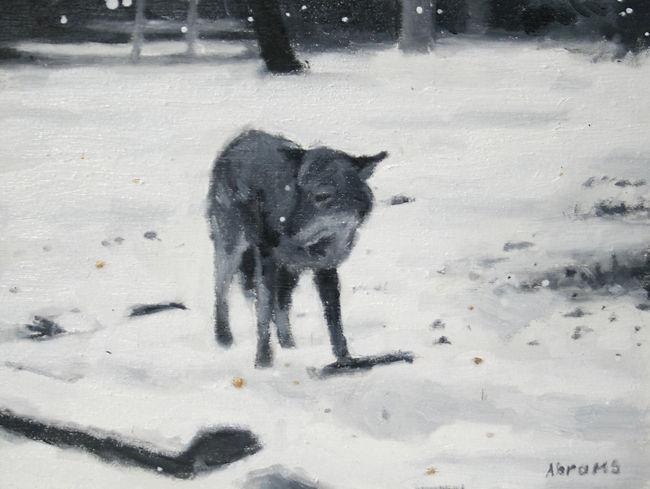 coyote 6x8 #1 - 1.jpg